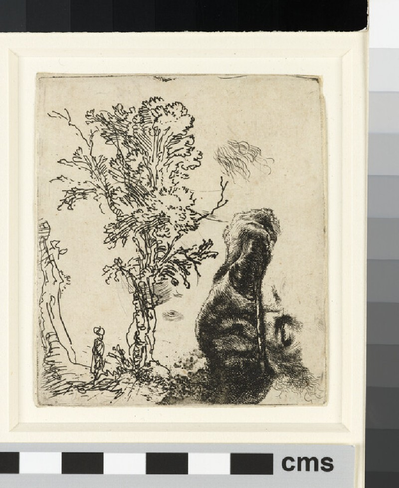 Sheet with two studies: a Tree, and the upper part of a Head of the Artist wearing a velvet Cap (WA1855.406)