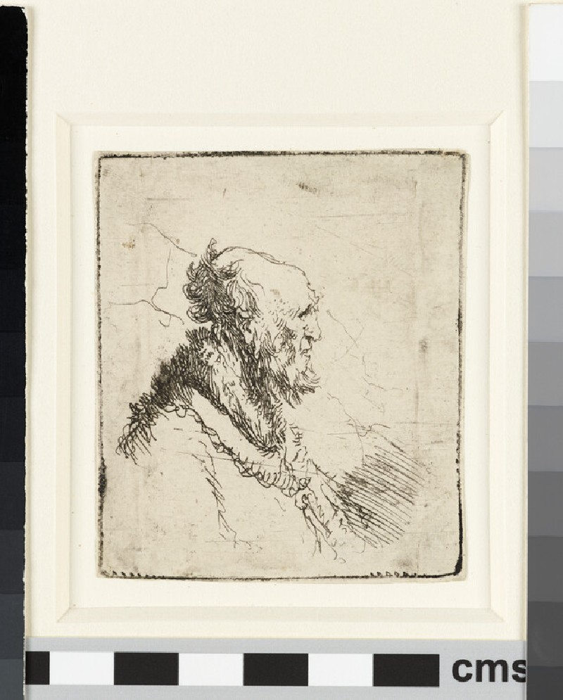 Bald old man with a short beard, in profile right