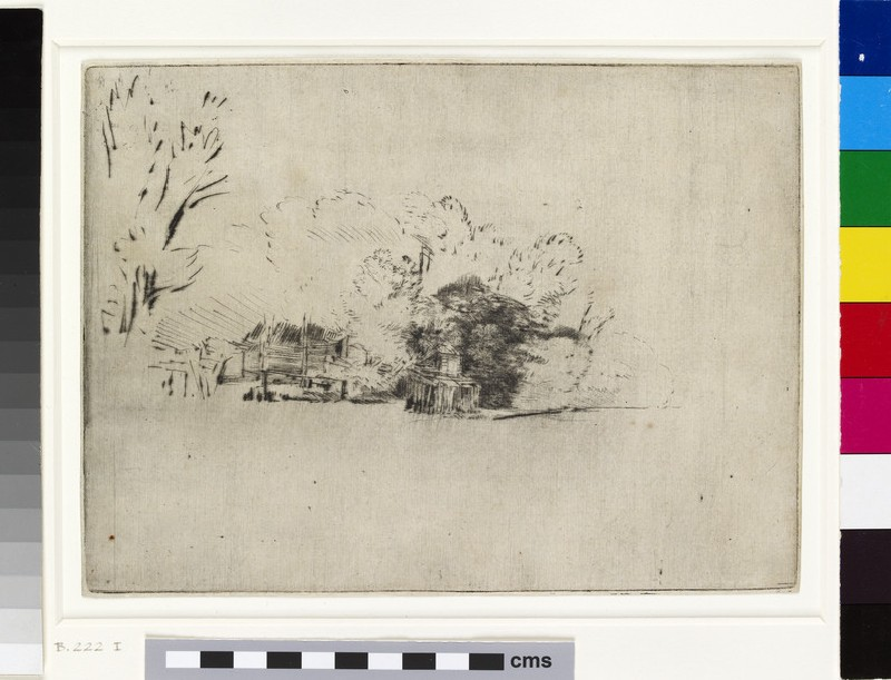 Clump of Trees with a Vista (WA1855.425, Clump of tress with a vista)