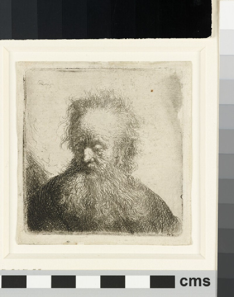 Old man with a flowing beard: bust (WA1855.429)