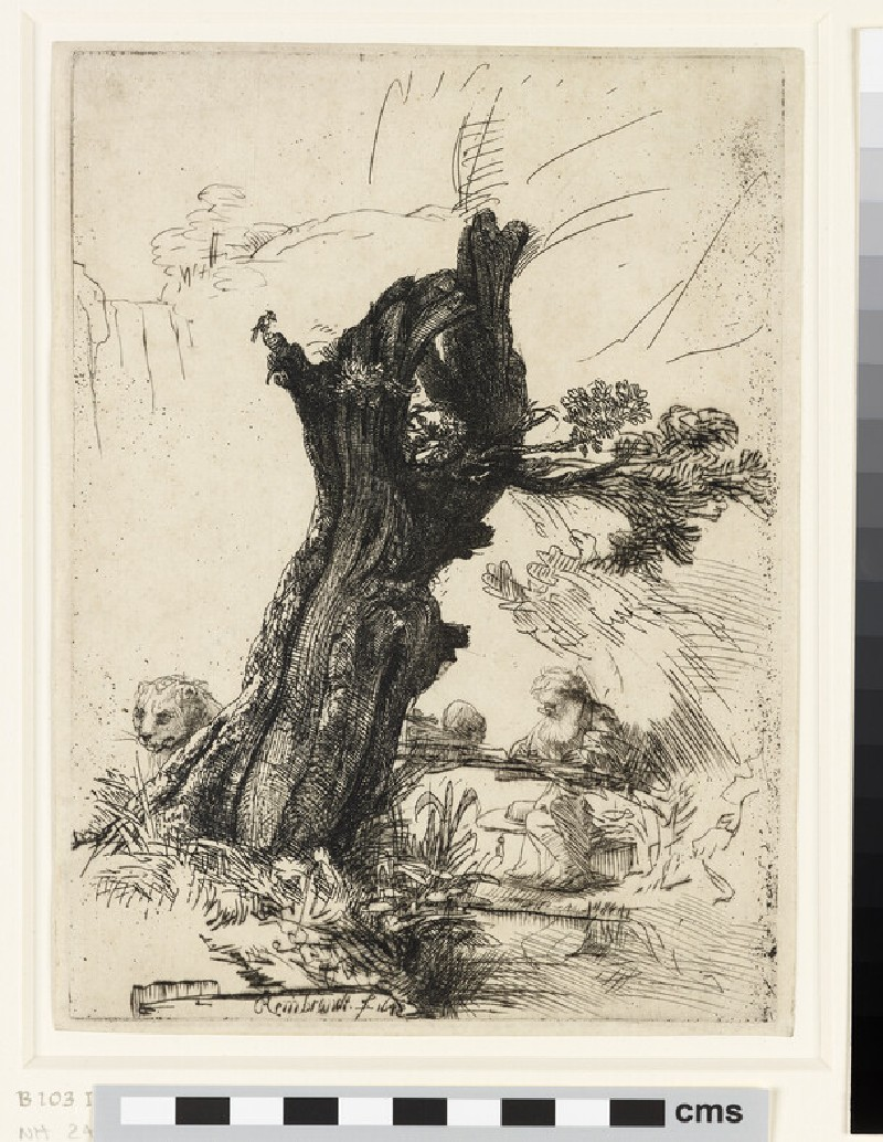 St Jerome beside a pollard Willow (WA1855.431)