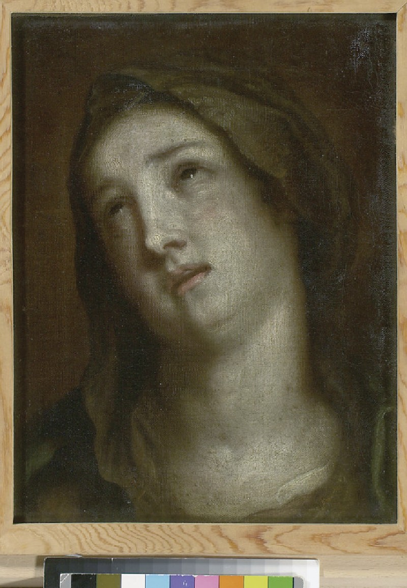 Head of the Virgin mourning (WA1855.571)