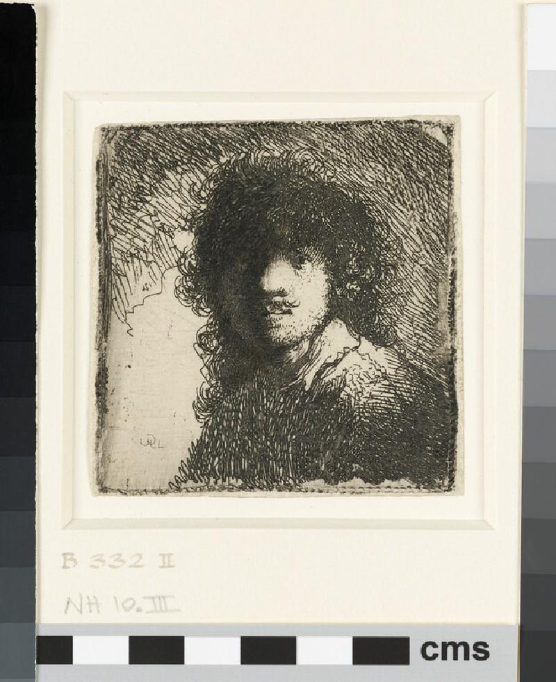 Self-portrait Bare-Headed: Bust