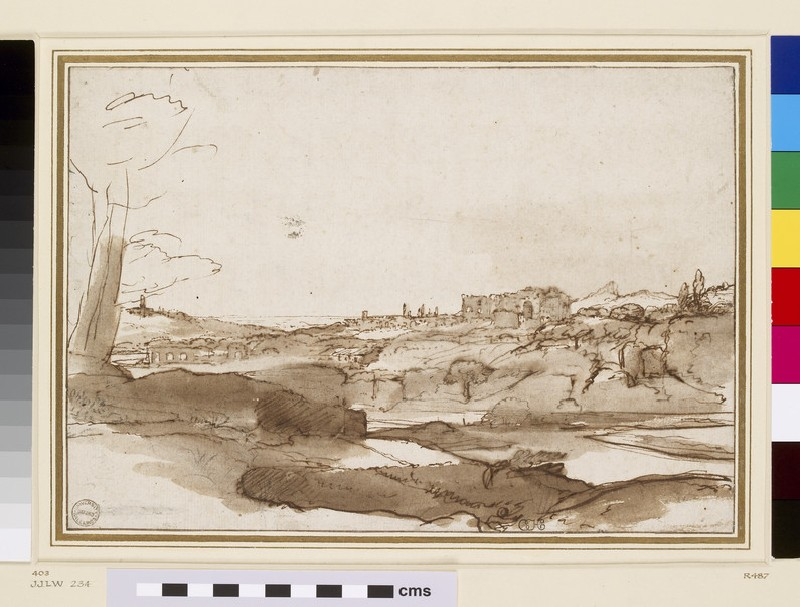 View of the Palatine (WA1855.60)