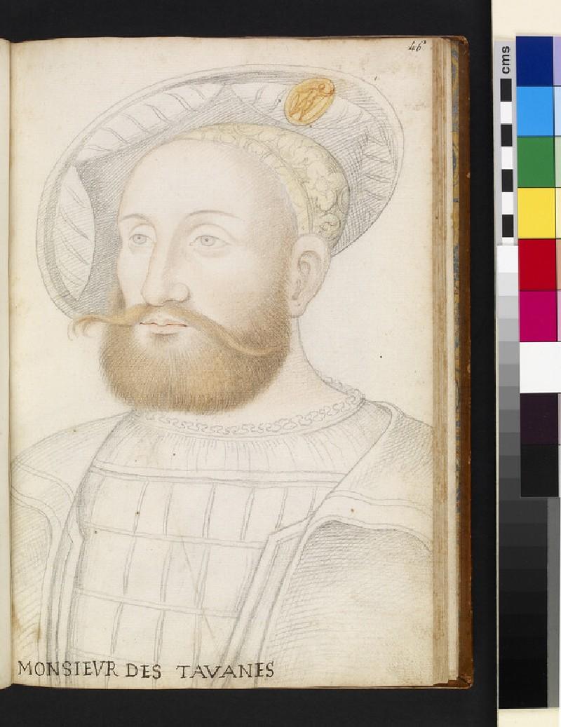 Monsieur de Tavannes (WA1863.5.46)