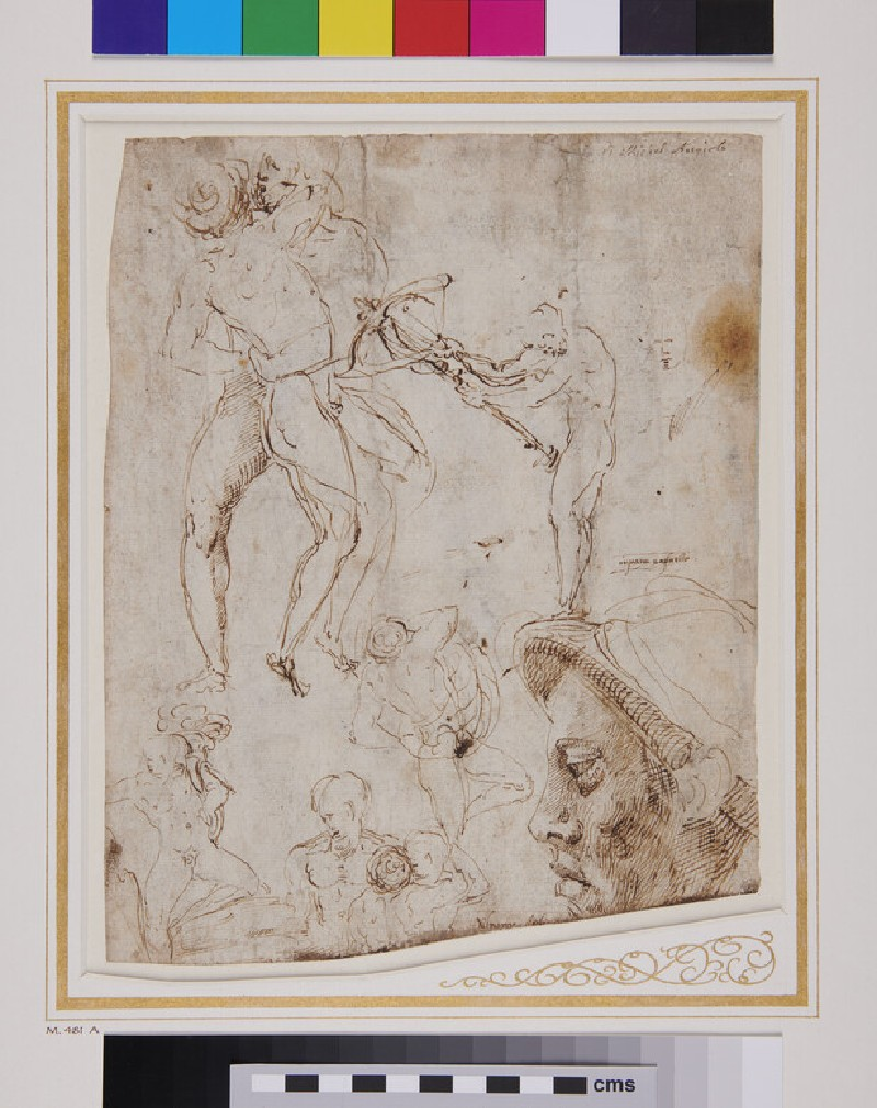 Recto: Sheet of Studies