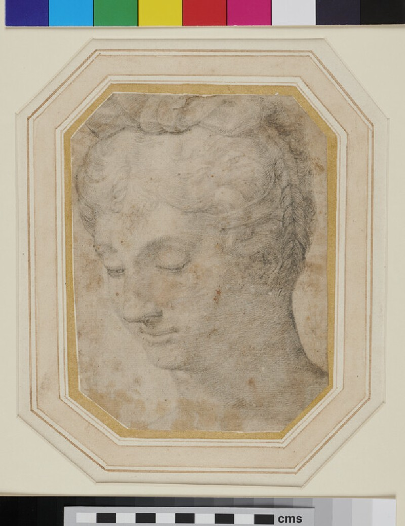 Head of a Woman (WA1863.754, recto)