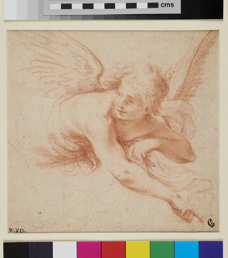 Study of an Angel (WA1863.831, recto)