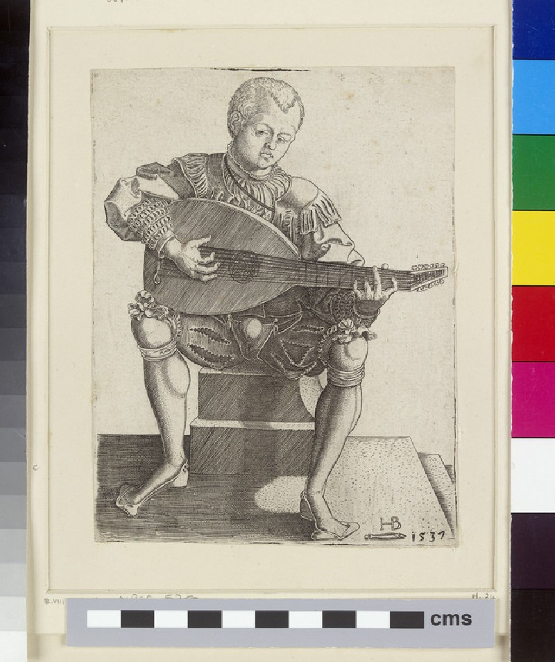 The Lute-Player