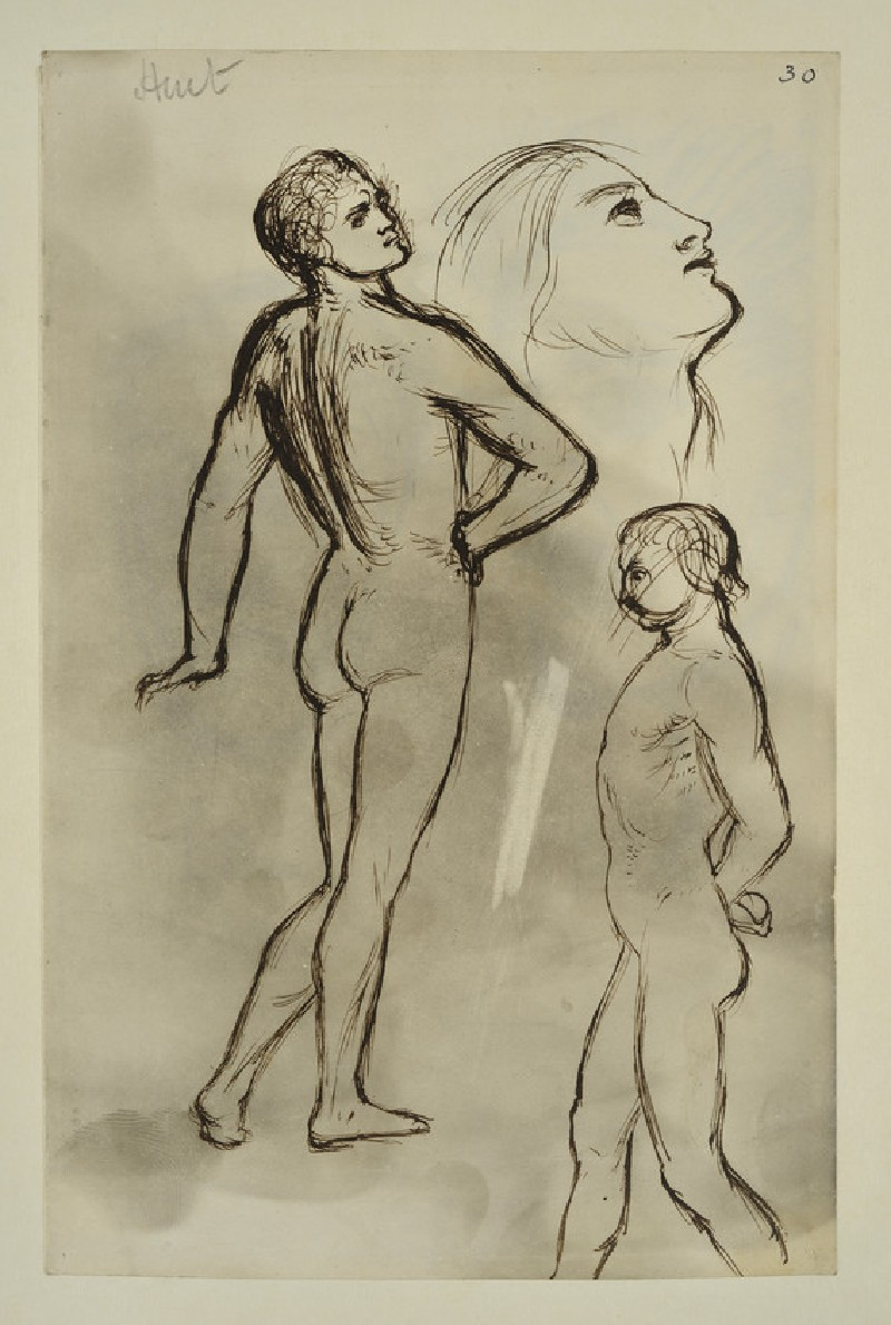Study of Two Male Nudes and a Woman's Head