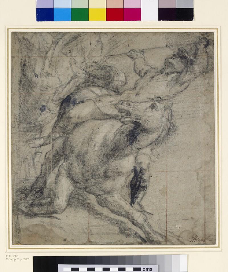 A Horse and Rider falling (WA1895.6)