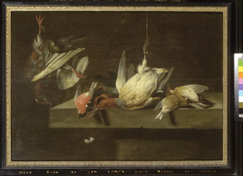 Still Life of Dead Birds