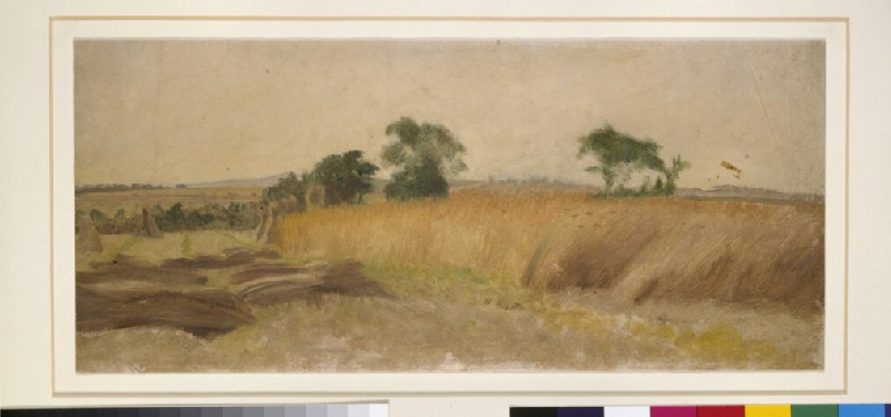 Study of a Cornfield (WA1915.16)