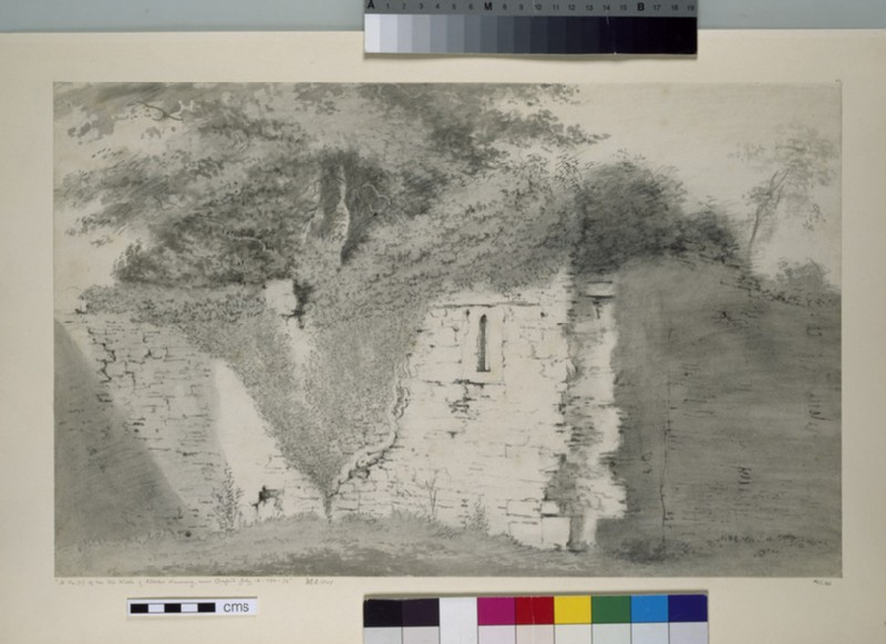 Part of the Old Walls of Godstow Nunnery (WA1925.126)