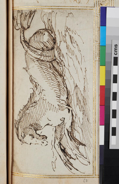 Sketch for a marine horse (verso)