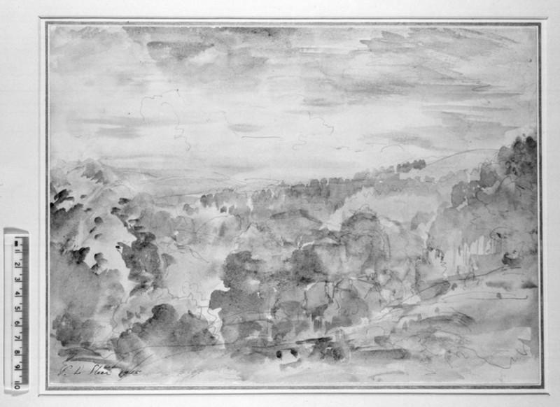 A Wooded Valley, Painswick (WA1931.6)