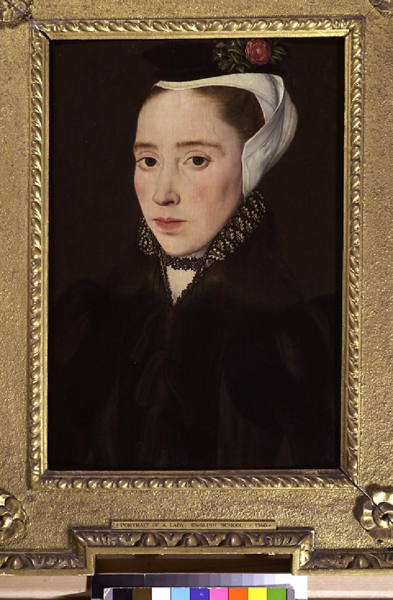 Portrait of a Lady (WA1933.25)