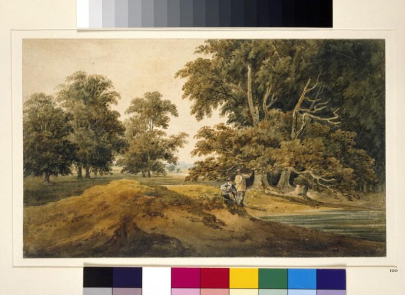 Parkland, Autumn (WA1934.208)