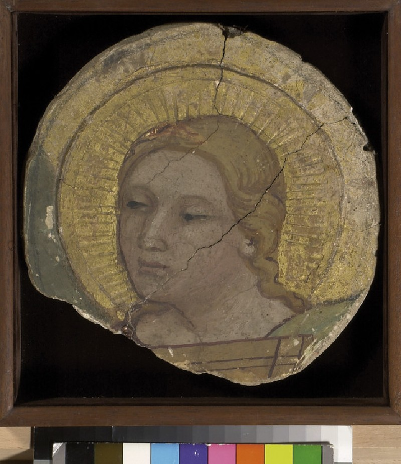 Head of an Angel (WA1936.7)