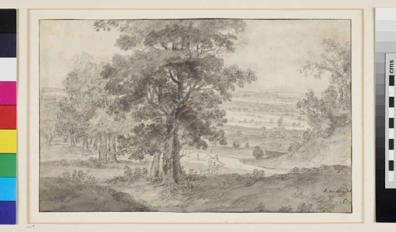 View over wooded Country