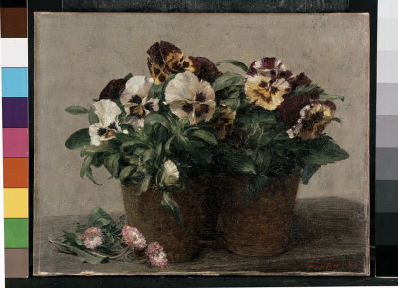 Still Life of Pansies and Double Marguerites (WA1937.66)