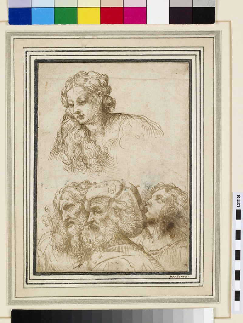 Four Studies of Heads