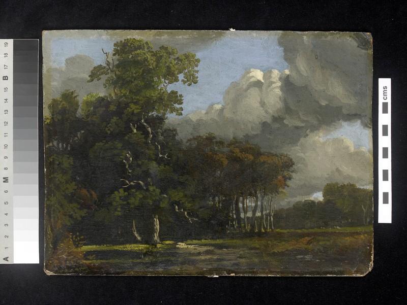Woodland Landscape (WA1939.53)