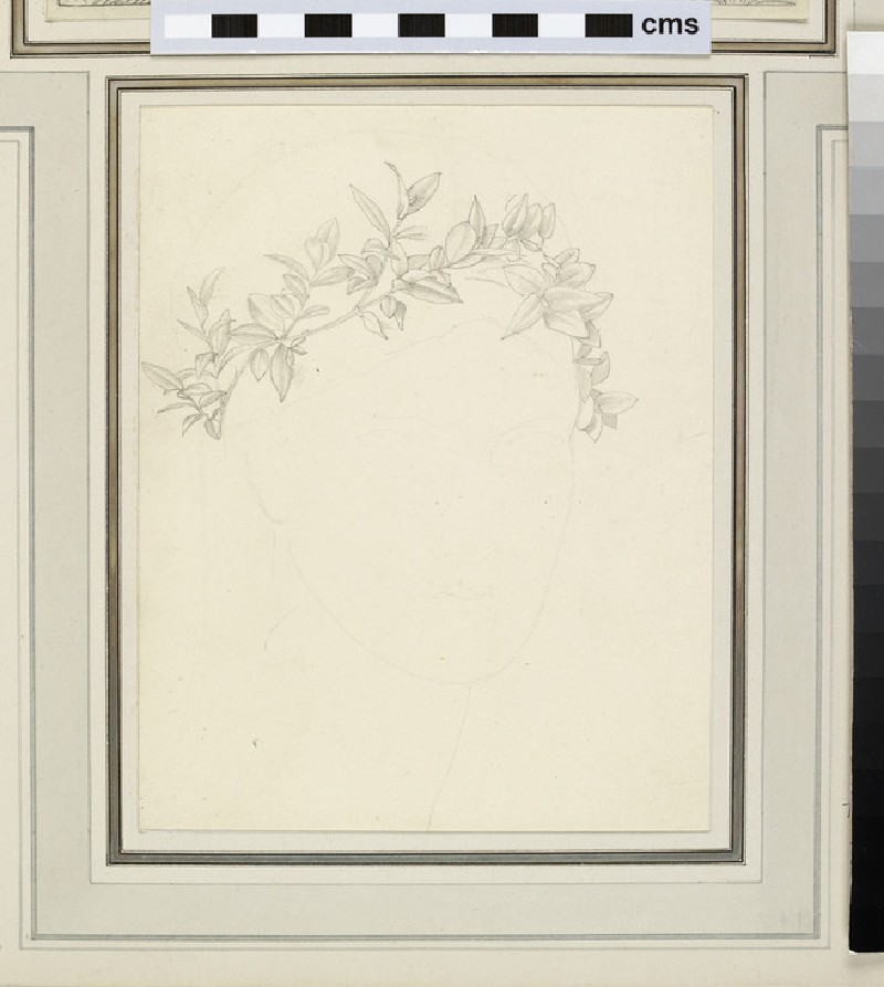 Study of a garland of leaves around a faintly sketched head
