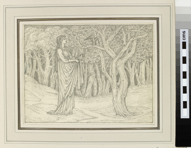 Study of a woman in a forest clearing (probably for 'The Squieres Tale', Kelmscott Chaucer) (WA1939.9.8)