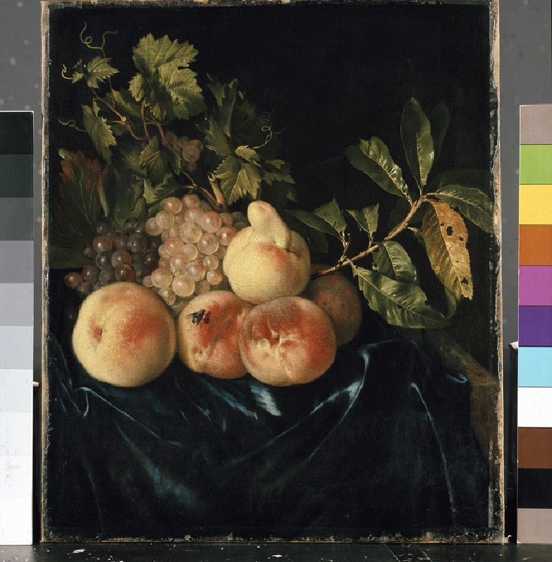 Still Life of Peaches and Grapes (WA1940.2.62)