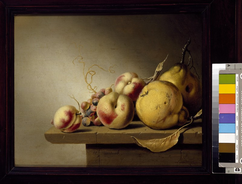 Still Life of Fruit on a Ledge (WA1940.2.74)