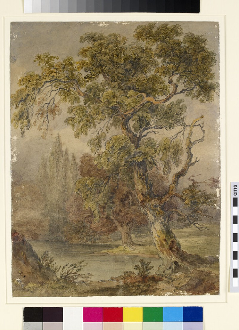 Landscape with trees and lake (WA1941.182)