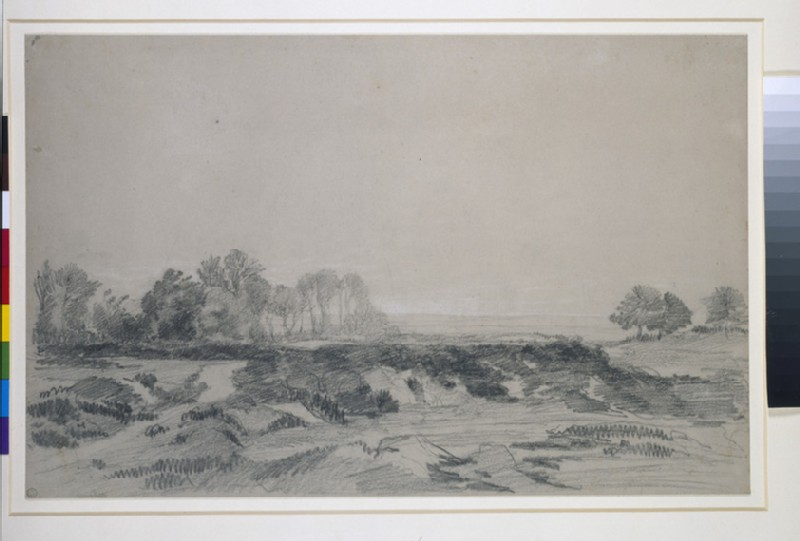 A view across rough ground with trees in the middle distance (WA1942.29)
