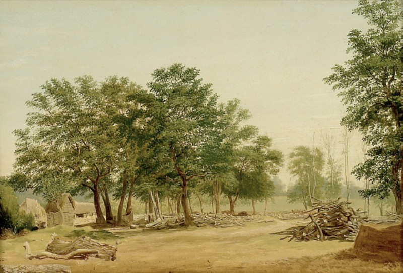 View in Bagley Wood, near Oxford (WA1942.62)