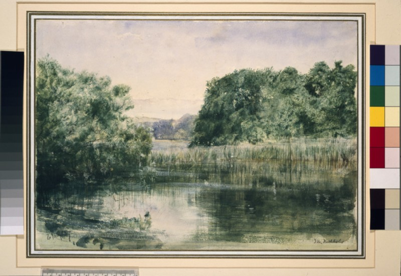 View of a Lake with Trees