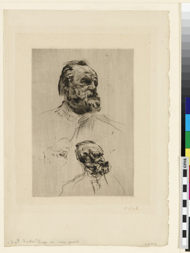 Victor Hugo in three-quarter view