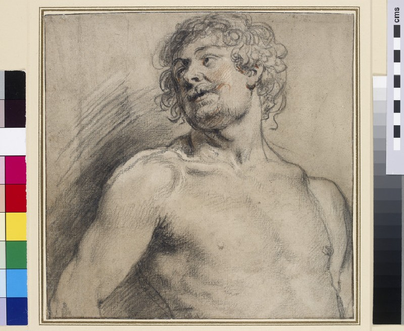 Half-length Figure of a nude Man