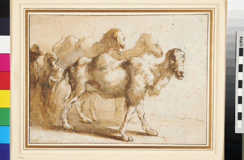 Recto: Study of three Camels and their Attendants 