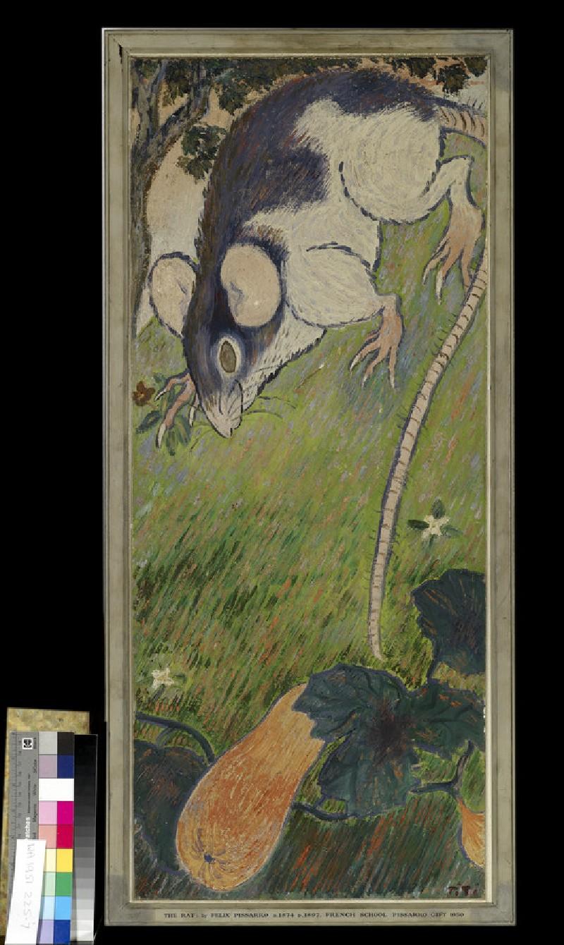 The Rat (WA1951.225.7)
