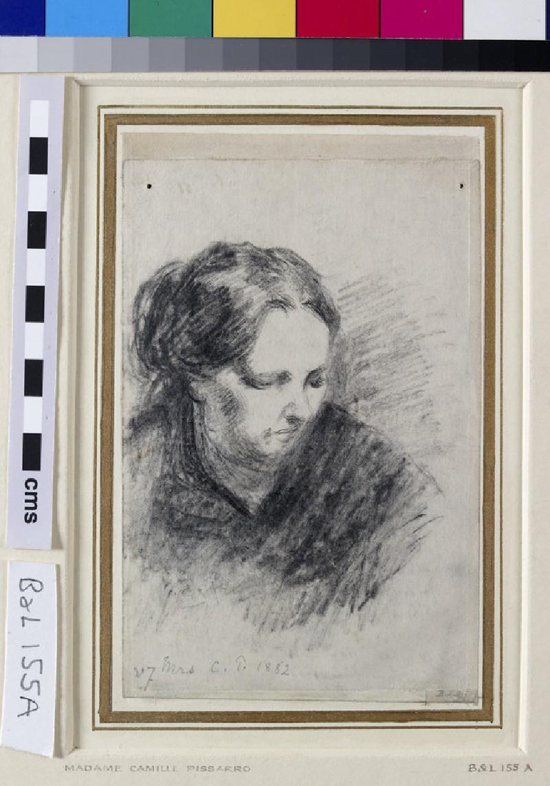 Portrait of Madame Pissarro (WA1952.6.205)