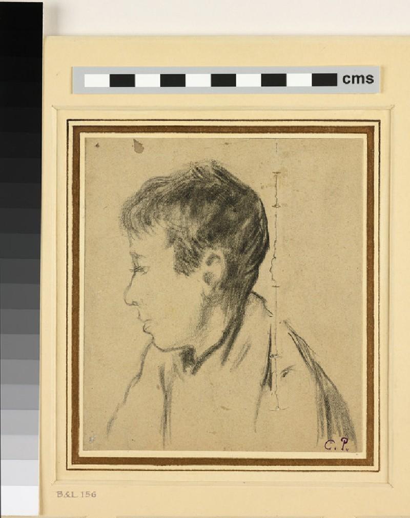 Portrait of Félix Pissarro (WA1952.6.207)