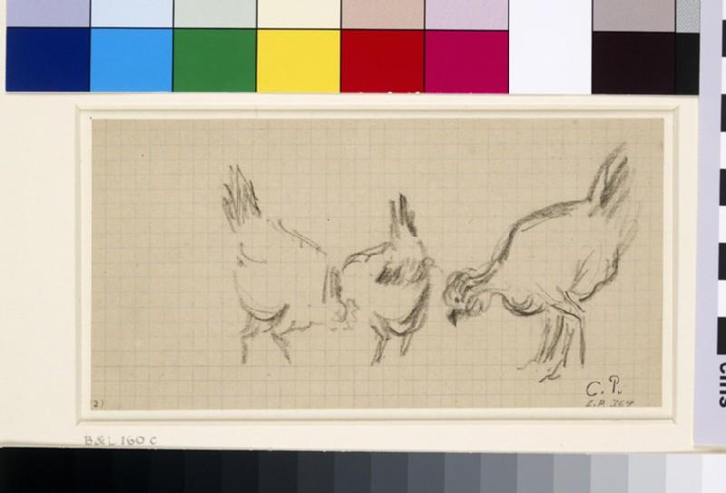Study of three hens (WA1952.6.216)