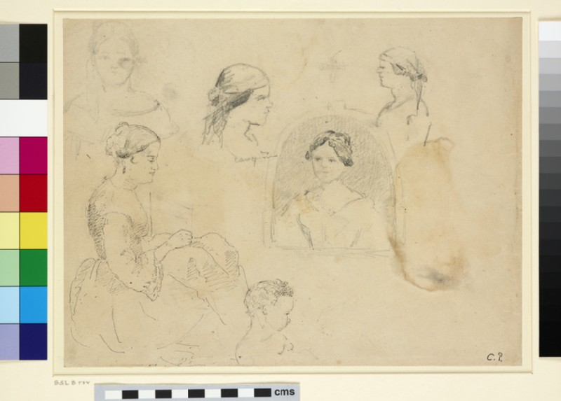 Recto: Sheet of Studies of female Figures and of a Child<br />Verso: Study of a Plant with five slight Studies of Animals