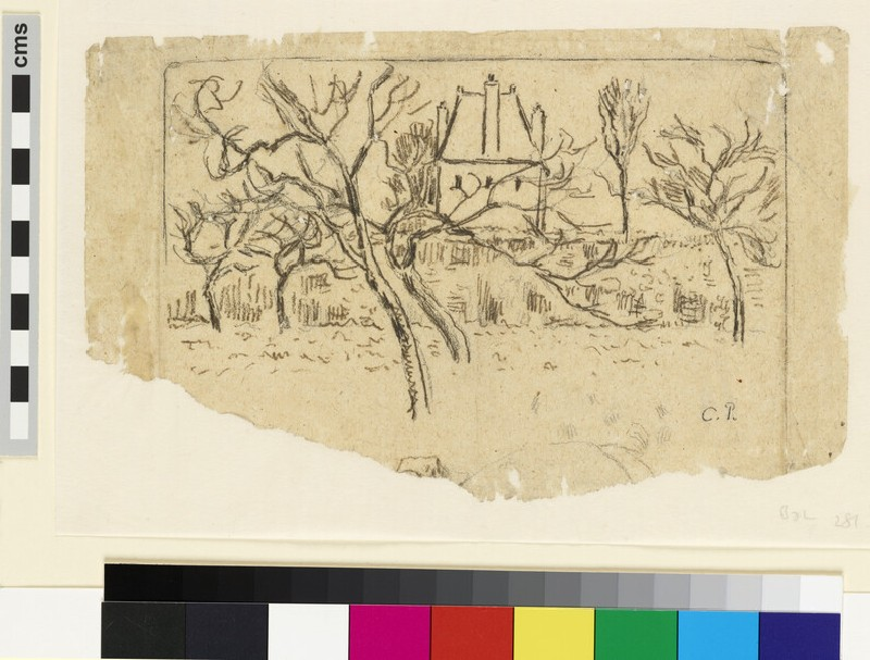Transfer drawing for 'Woman in a kitchen garden' (WA1952.6.399)