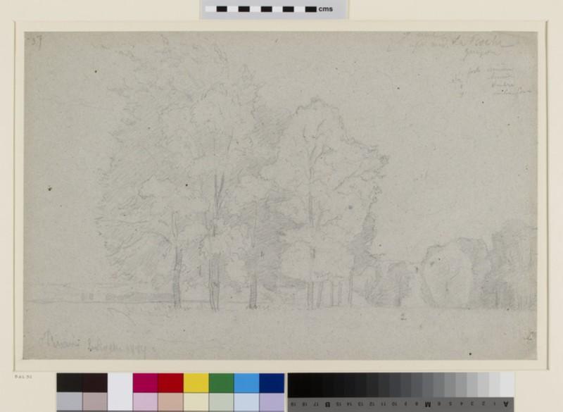 Landscape Study of La Roche-Guyon (WA1952.6.73)