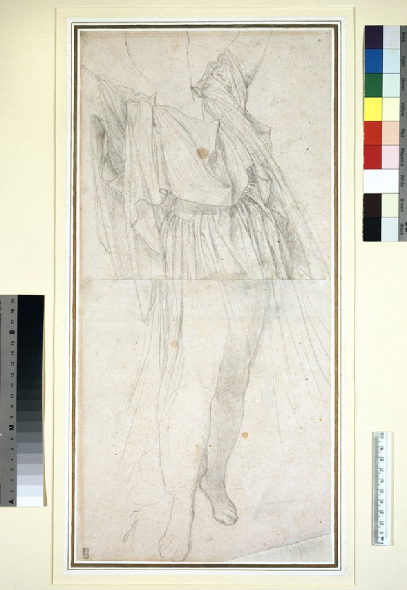 Drapery study for a woman, standing with arms raised (WA1954.70.17)