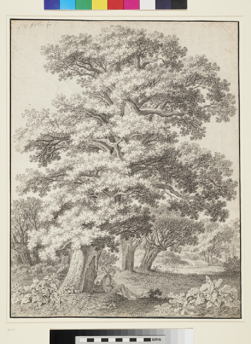 Woodland Landscape with a Man resting beneath an Oak Tree