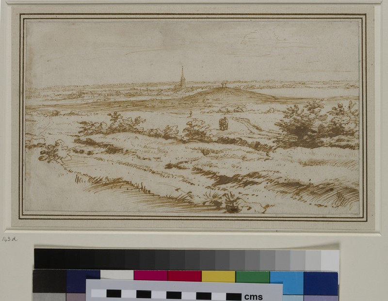 Landscape near Apeldoorn