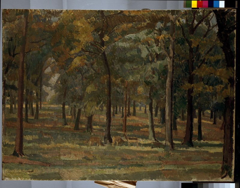 Richmond Park (WA1957.18.1)