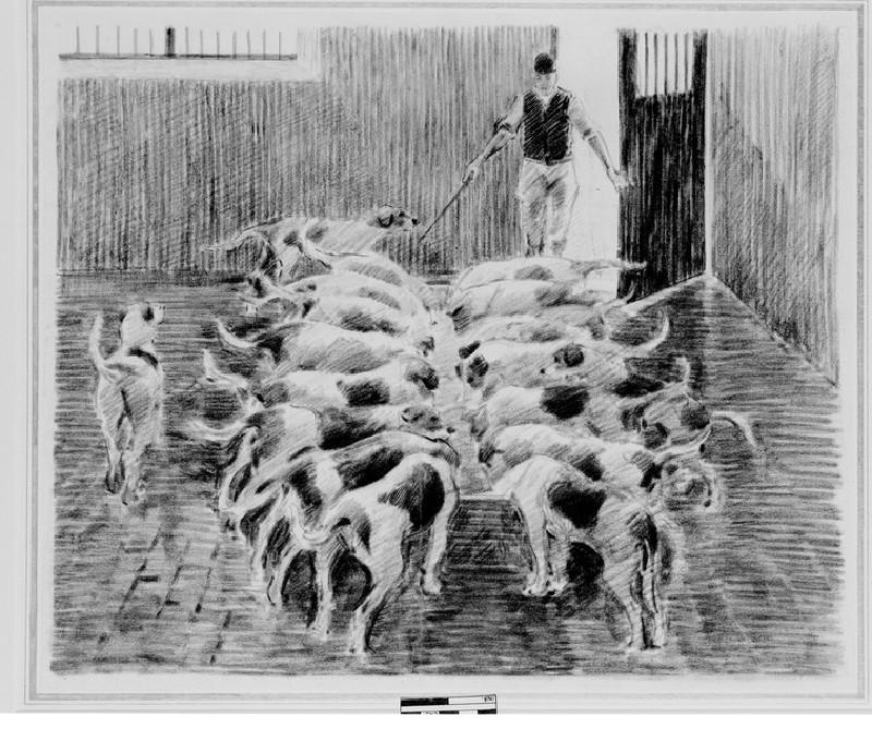 Hounds Feeding